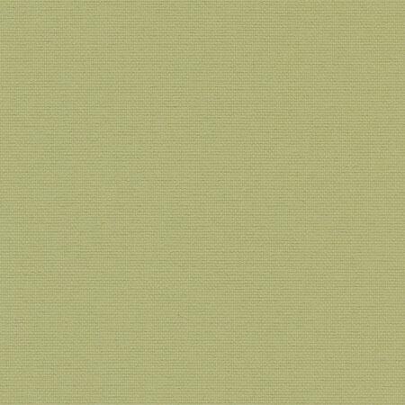 ОМЕГА оливковый, 250 см